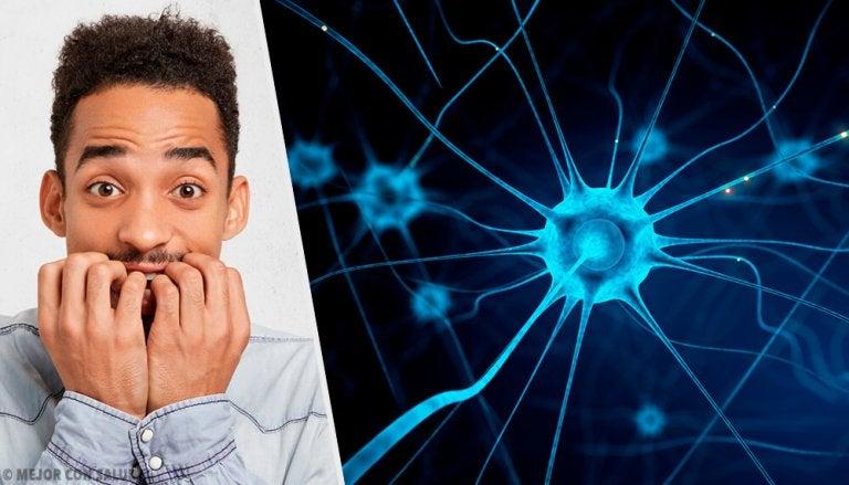 5 astuces idéales pour calmer les nerfs