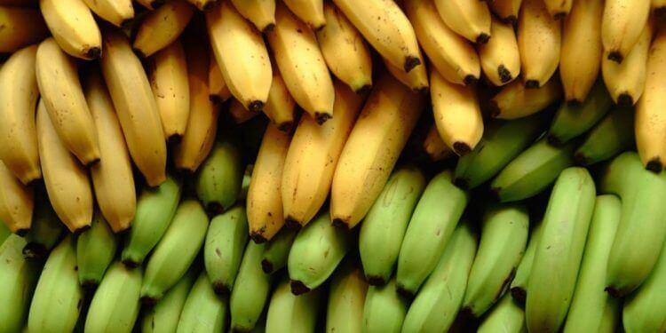 3 différences nutritionnelles entre la banane plantain et la banane