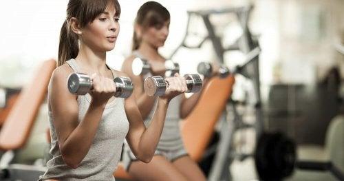 flexions des biceps pour renforcer les bras