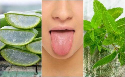 Soulager les cloques sur la langue avec 6 traitements d'origine naturelle