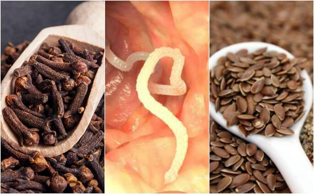 Comment éliminer les parasites de l'intestin