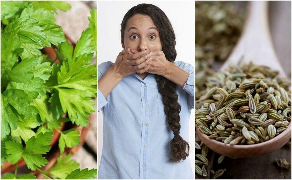 Comment combattre l'halitose de l'estomac avec 5 remèdes naturels