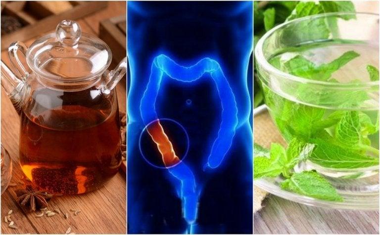 Comment préparer 5 infusions médicinales pour nettoyer le côlon naturellement