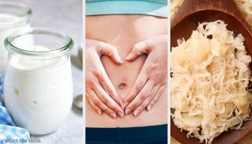 Aliments probiotiques pour votre flore intestinale