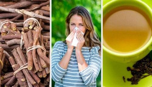 4 alternatives naturelles pour lutter contre la rhinite