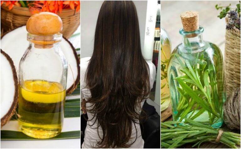 Traitement maison à l'huile de noix de coco et au romarin pour faire pousser les cheveux
