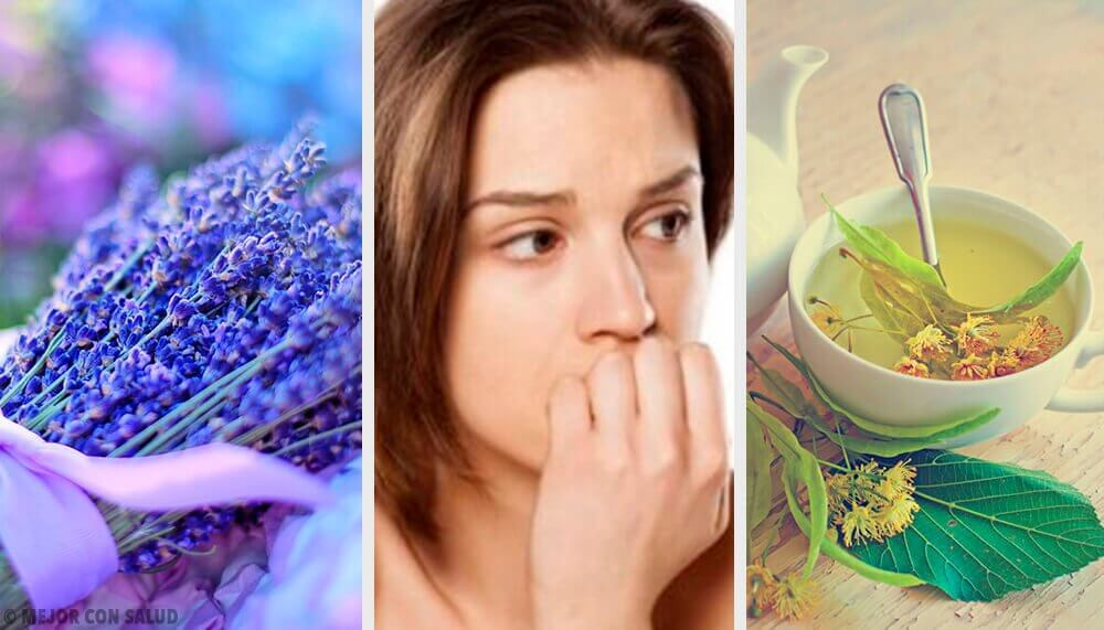 Les 5 meilleurs anxiolytiques naturels pour calmer l'anxiété
