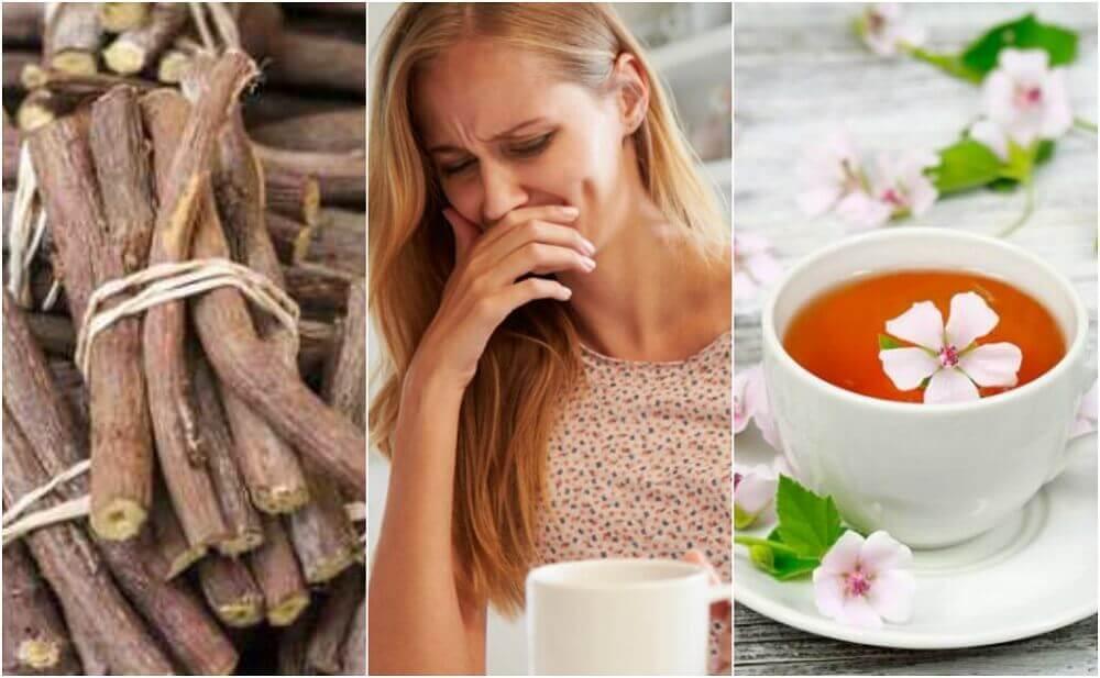 5 remèdes naturels pour traiter l'œsophagite