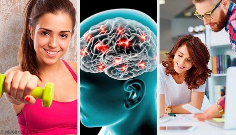 8 conseils neurobiologiques pour vous aider à être heureux