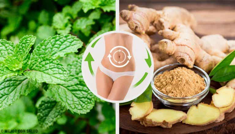 Boisson au gingembre et à la menthe pour activer le métabolisme