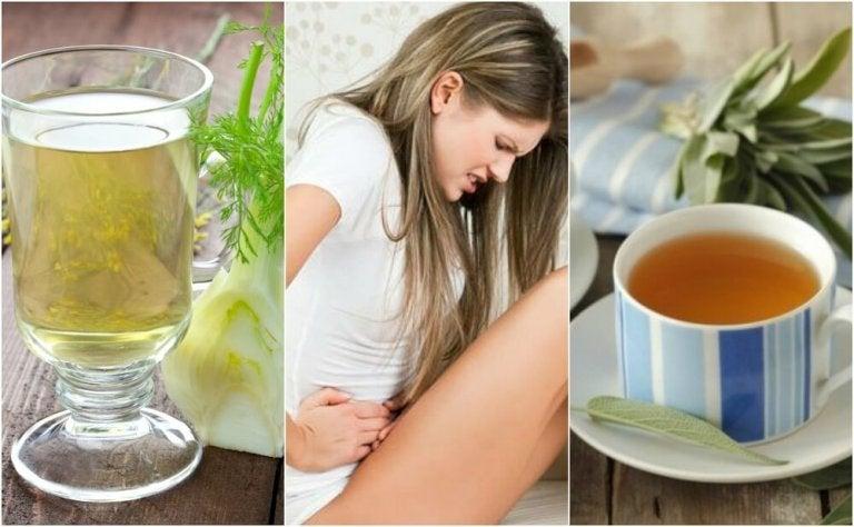 6 remèdes à base de plantes pour traiter la diarrhée