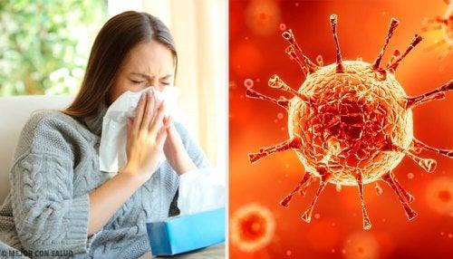 Les virus et la diarrhée