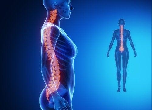 douleurs dans la partie basse de la colonne vertébrale