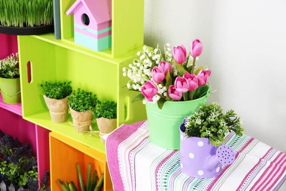 plantes sur les meubles