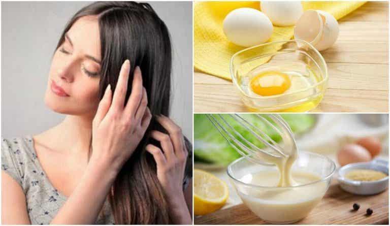 Traitements naturels contre les cheveux secs