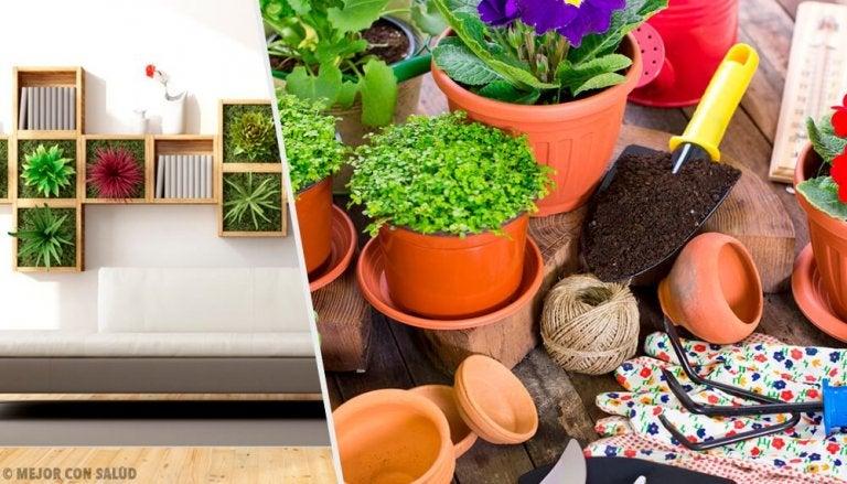 Revitalisez votre maison grâce à 10 idées de décoration avec des plantes
