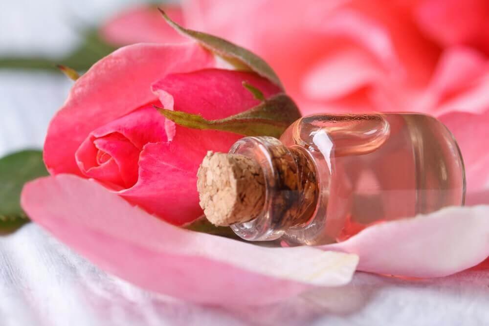 toniques maison pour le visage à base de rose