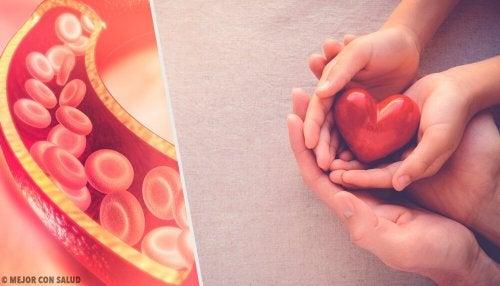 Tout ce que vous devez savoir sur le cholestérol