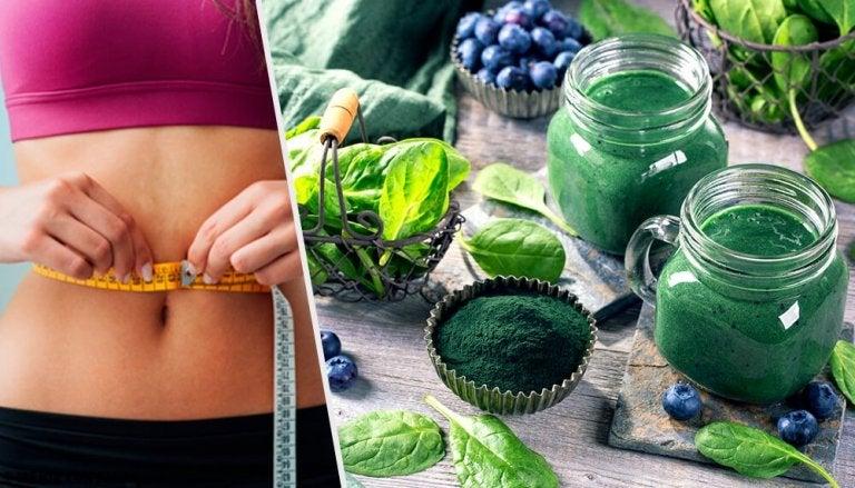 4 bienfaits de la spiruline pour la perte de poids