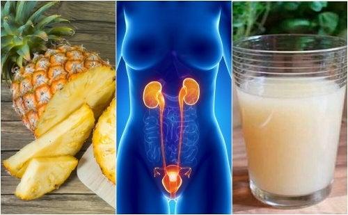 6 remèdes pour les maladies des voies urinaires