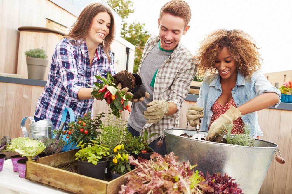 fabriquer vos propres pots et jardinières : mesures de sécurité