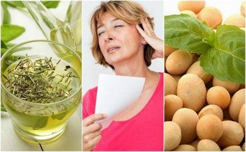 5 produits naturels pour contrôler la ménopause