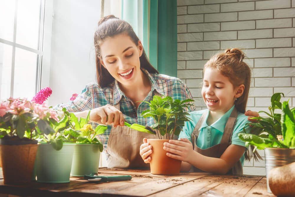 jardiner en famille un petit jardin