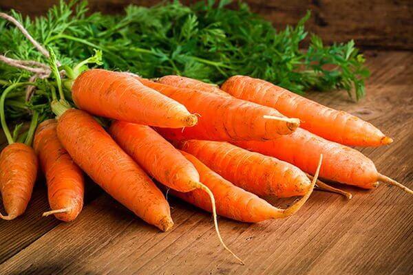 recettes à base de carottes