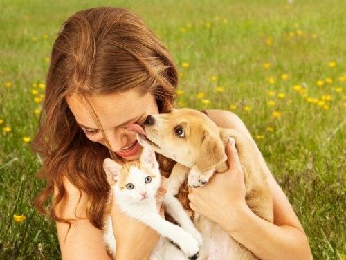 bienfaits des animaux domestiques : ils favorisent le positivisme
