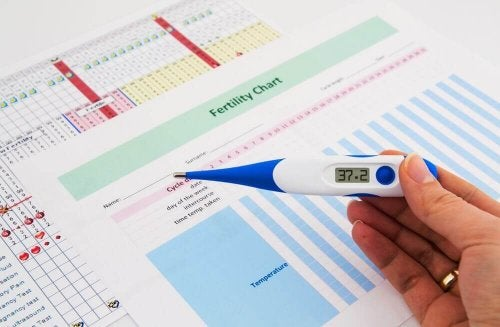 Comment calculer sa période de fertilité si son cycle menstruel est irrégulier ?
