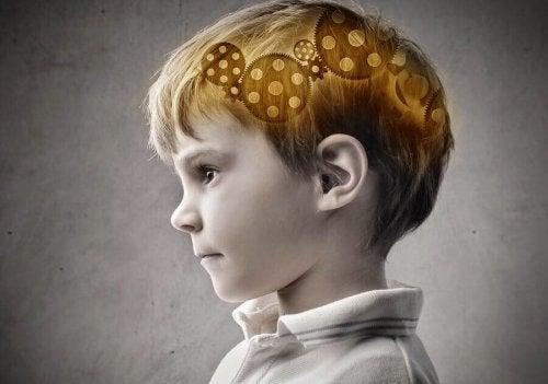Le pourcentage d'intelligence transmise au cerveau de l'enfant est élevé