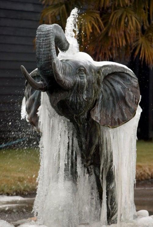 fontaine en forme d'animaux pour décorer votre jardin