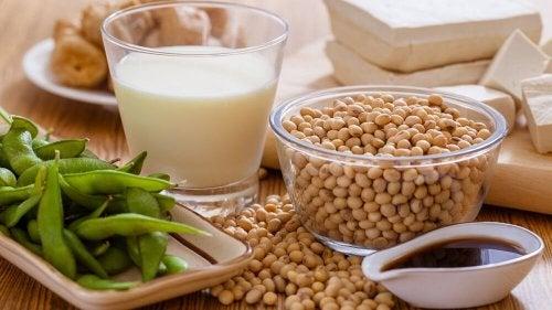 consommer des protéines végétales pour contrôler un cholestérol élevé