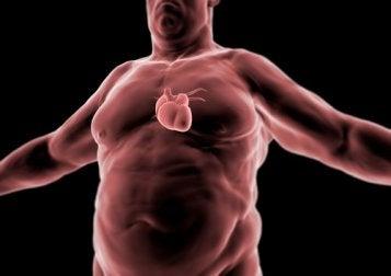 regime-cetogene-maladies-coeur