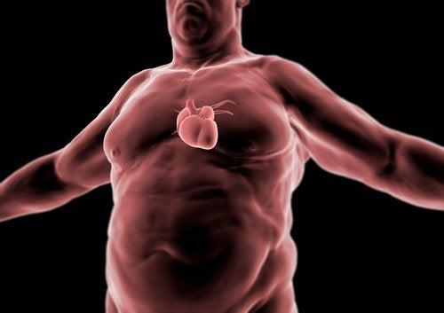 se protéger des maladies cardiaques grâce au régime cétogène