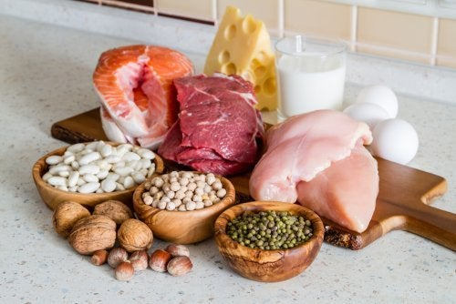 Aliments des régimes protéinés.