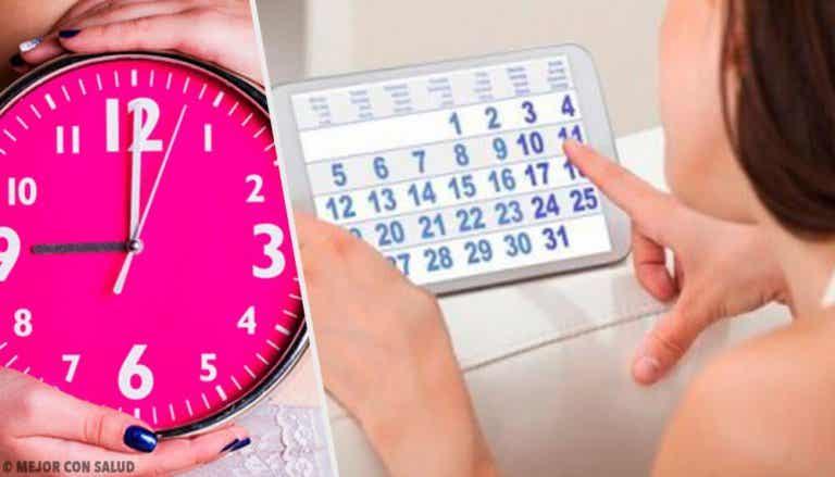 Retard menstruel : quand faut-il s'inquiéter ?