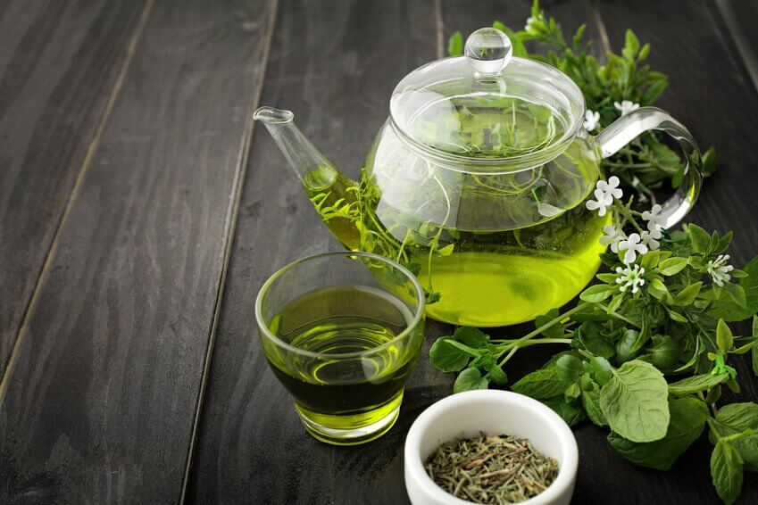le thé vert pour lutter contre la syphilis