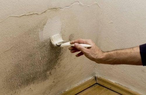5 astuces contre l'humidité à la maison