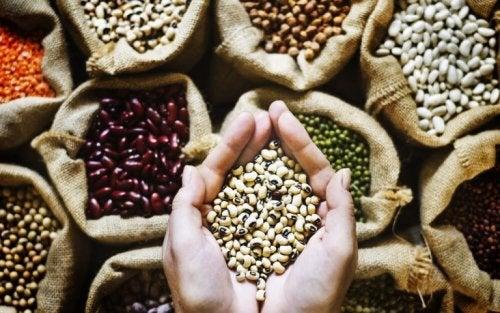 les légumineuses sont des aliments riches en fibres