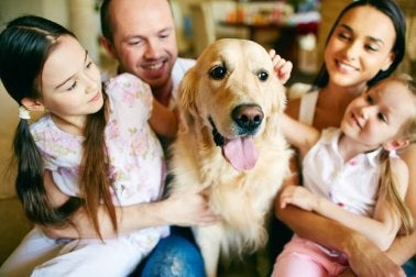 un animal de compagnie comme cadeaux pour la famille