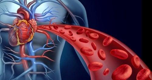 remèdes au curcuma pour stimuler la circulation sanguine