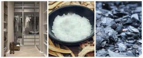 Eliminer les mauvaises odeurs dans des espaces clos avec 2 ingrédients