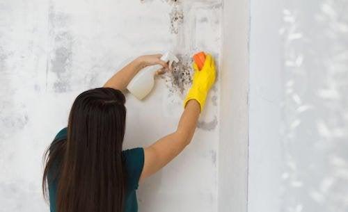 Comment enlever la moisissure de la maison