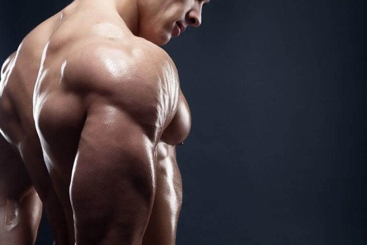 4 petits déjeuners pour avoir de la masse musculaire