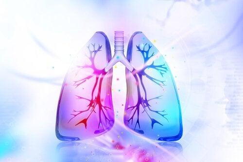 3 remèdes naturels pour désintoxiquer les poumons