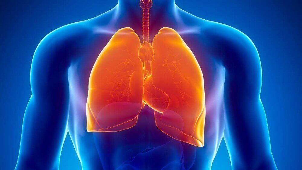 sueurs froides pendant la tuberculose
