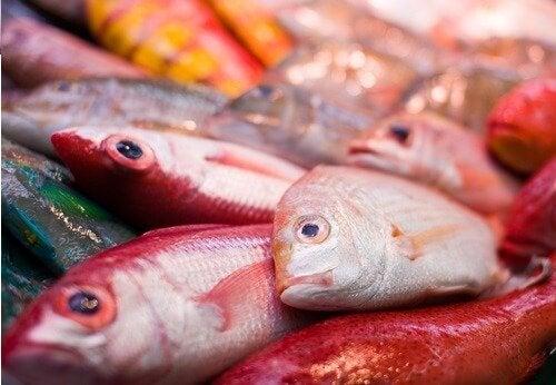 lien entre autisme et poisson contaminé au mercure