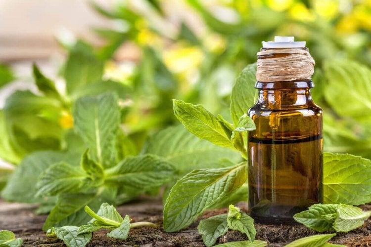 remèdes naturels pour soigner une entorce de la cheville