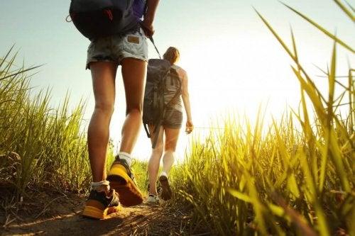 la randonnée fait partie des exercices cardio simples